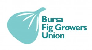 Bursa Black Fig Growers Union